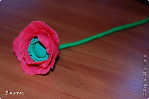свой мак лепила по этому мк ⪡ Ссылка удалена, п. 2.4 http://stranamasterov.ru/print/regulations ⪢ фото 2