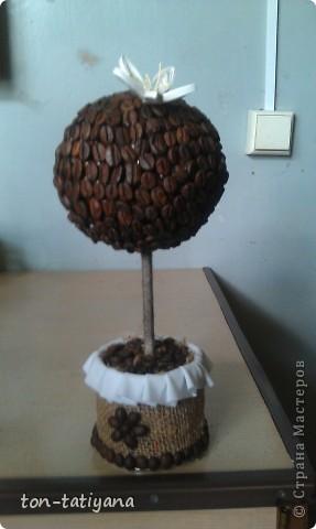 Моё первое кофейное дерево. Сделано в подарок на день рождения одной замечательной женщине!Знаете,бывают в  жизни такие люди, за встречу с которыми хочется благодарить Бога!Вот и она - одна из них! Надеюсь, ей понравится! фото 1