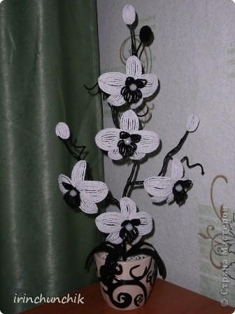 """История создания этой орхидеи для меня была очень неожиданной. Родилась у меня 23 мая двоюродная сестра. Ах, какое это необычное чувство - рождение сестренки, когда уже давно нянчишь племянников и думаешь о возможности появления в скором будущем собственных детей!... Подарок молодым родителям захотелось сделать своими руками - чтобы для них это тоже стало неожиданностью))) Надо сказать интерьер у них ооочень стильный, тщательно подобранный в мелких деталях, боялась браться за дело. Вдруг не впишется моя композиция?! Посоветовалась с мамой, на что она предложила сделать что-то вроде моего дерева """"инь-янь"""", будет точно кстати. Поразмыслив и решив, что все же хочу подарить цветы придумала вот такую орхидейку... P.S. За образец цветка взяла работу Ирины из Орла: http://stranamasterov.ru/node/346120?c=favorite фото 6"""