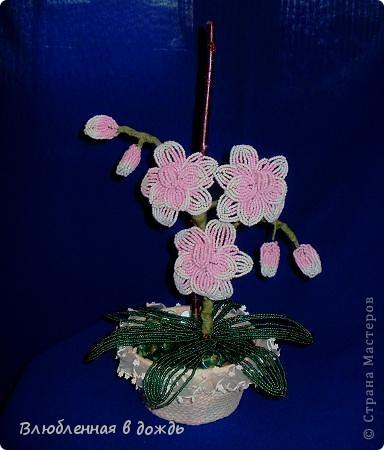 Орхидея сделана по МК mari-m26, спасибо большое за чудесную идею и прекрасный Мастер-класс. фото 1