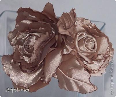 Ох и потянуло на  розы!  фото 4