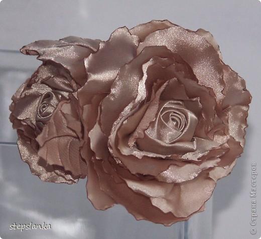 Ох и потянуло на  розы!  фото 5