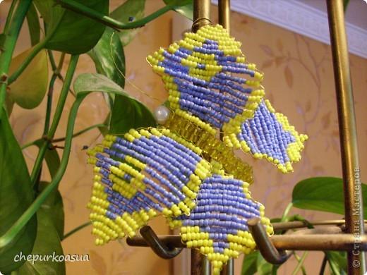 Эта моя самая любимая бабочка. Я сплела её по собственно придуманной схеме. Эта бабочка украшает мамин любимый цветок. фото 5