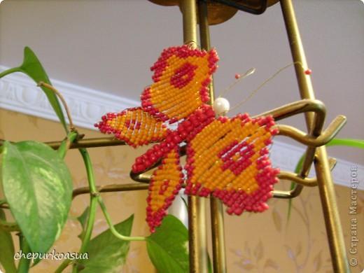 Эта моя самая любимая бабочка. Я сплела её по собственно придуманной схеме. Эта бабочка украшает мамин любимый цветок. фото 6