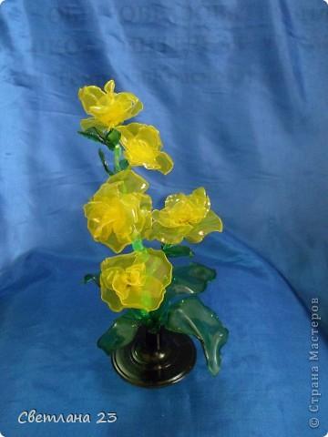 Спасибо БОЛЬШОЕ за новые идеи!!! Вот и я попробовала сделать такие цветы... http://stranamasterov.ru/node/14525?c=favorite фото 1