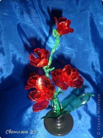 Спасибо БОЛЬШОЕ за новые идеи!!! Вот и я попробовала сделать такие цветы... http://stranamasterov.ru/node/14525?c=favorite фото 4
