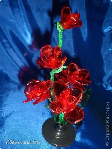 Спасибо БОЛЬШОЕ за новые идеи!!! Вот и я попробовала сделать такие цветы... http://stranamasterov.ru/node/14525?c=favorite фото 5