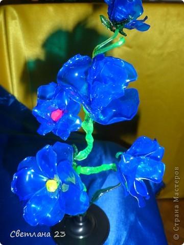 Спасибо БОЛЬШОЕ за новые идеи!!! Вот и я попробовала сделать такие цветы... http://stranamasterov.ru/node/14525?c=favorite фото 7