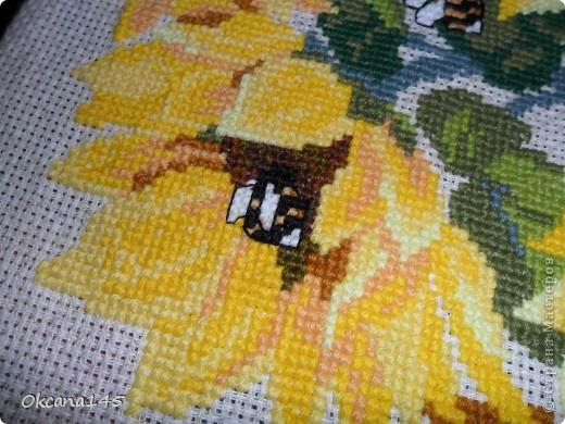 Первая вышивка фото 2