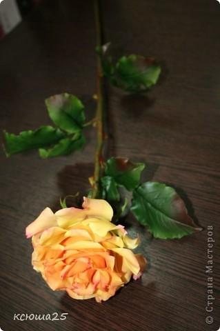 Розы в полный рост)) 70 см (лепка глина) фото 5