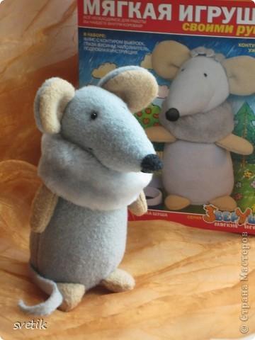 Вот такую красавицу-мышку сшили мы с Ангелинкой. Похожа на оригинал? фото 1