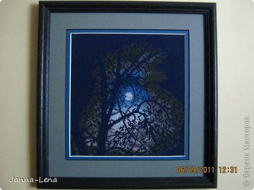Лунная ночь не миниатюра. 16х18 см. Нитки брала не по схеме, а подбирала сама. фото 1