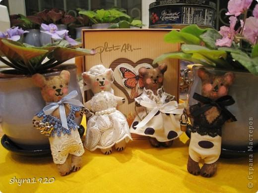 Вот мои мишки-малютки. фото 1