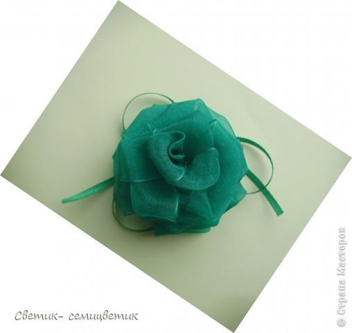 Благодарю Татьяну ( TatyanaBec) за прекрасный мастер-класс. http://stranamasterov.ru/node/253704 фото 2