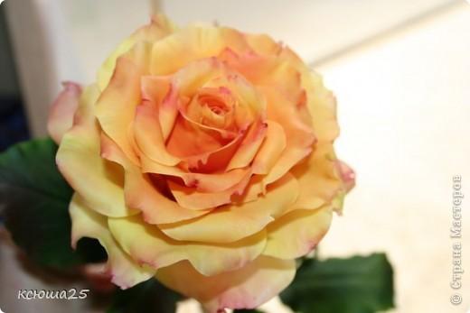 Розы в полный рост)) 70 см (лепка глина) фото 7