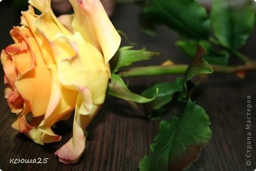 Розы в полный рост)) 70 см (лепка глина) фото 9