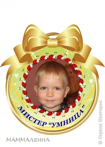 "Медаль в номинации ""МИСТЕР ФАНТАЗЕР"" фото 21"