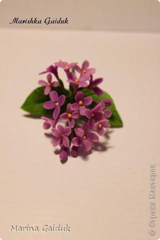Цветок и бутоны Харти, листики и чашелистики из Модерн Клей фото 6