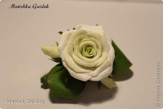 Цветок и бутоны Харти, листики и чашелистики из Модерн Клей фото 1