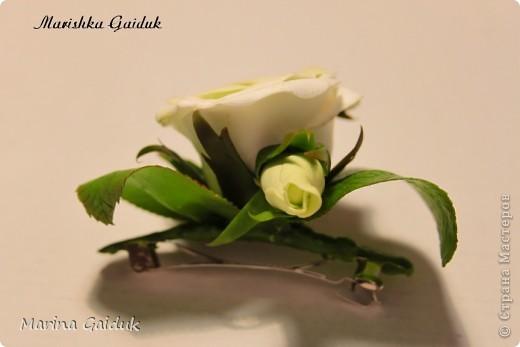 Цветок и бутоны Харти, листики и чашелистики из Модерн Клей фото 2