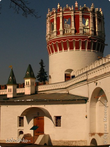 Новодевичий женский монастырь фото 10