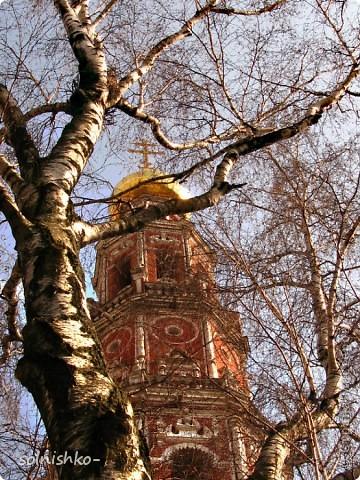 Новодевичий женский монастырь фото 3