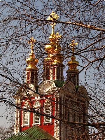 Новодевичий женский монастырь фото 15