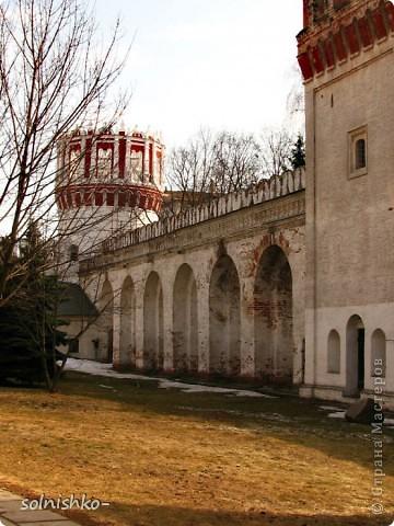 Новодевичий женский монастырь фото 5