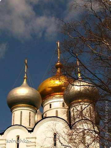 Новодевичий женский монастырь фото 7