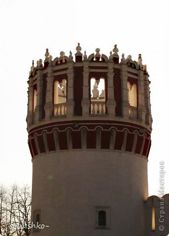 Новодевичий женский монастырь фото 11