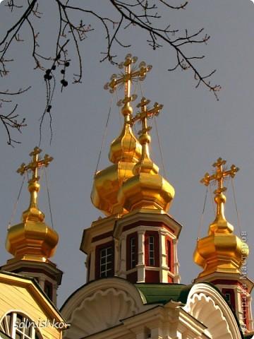 Новодевичий женский монастырь фото 12
