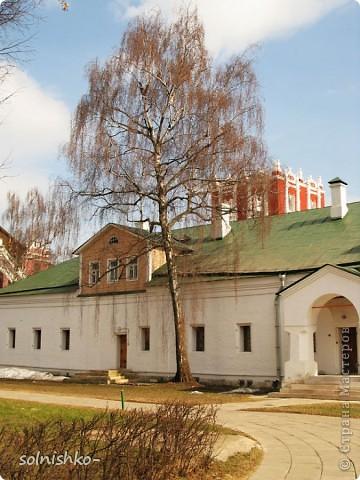 Новодевичий женский монастырь фото 8