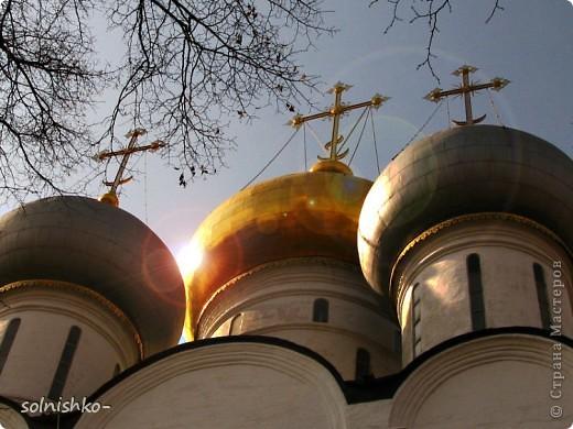 Новодевичий женский монастырь фото 19