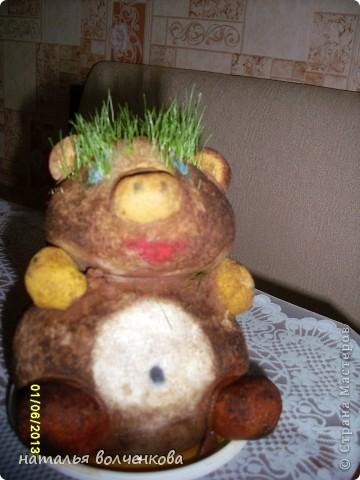 мой первый травяной зверек,давно хотела себе такой но денег все было жалко.раскрашивали вместе с сыночком гуашью,потом стало понятно что она не долговечна и при первом поливе краски потекли фото 2