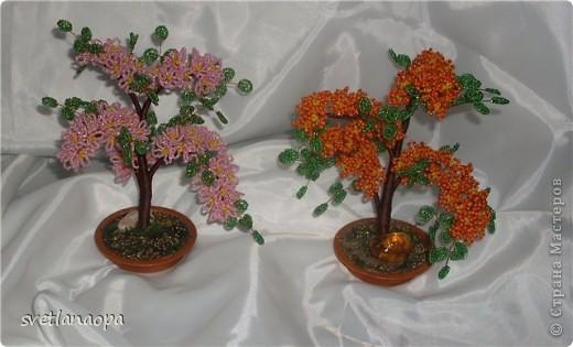 оранжевенькое.. фото 4