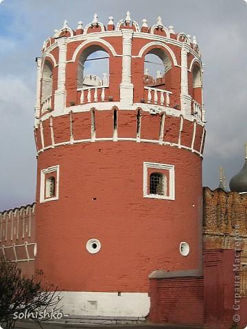 -Донской монастырь (Москва)- фото 6