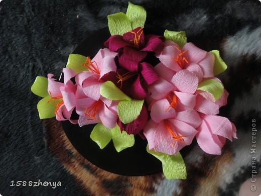 Мой любимый цветок - лилии!Последнее время много времени стала уделать этим милым цветам! фото 2