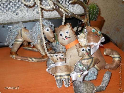 Кот и кошечка решили забраться на верхушку дерева,уединится ...так сказать от своих котят.. фото 9