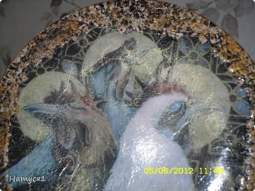 Моя небольшая птицеферма фото 3