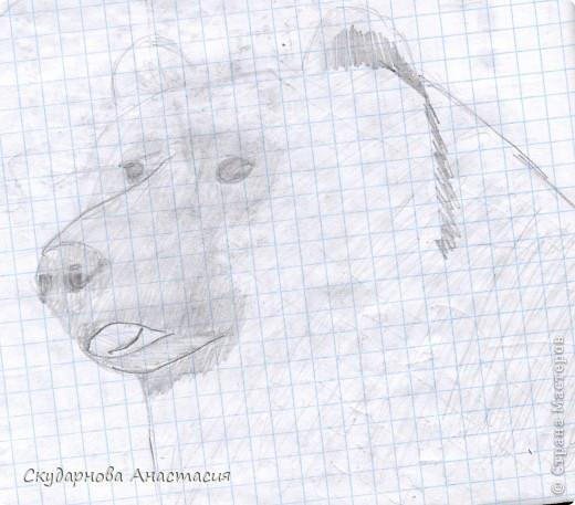 Все это я рисовала когда мне было 10 лет, так что не ругайте строго:) По большей части аниме)) фото 8