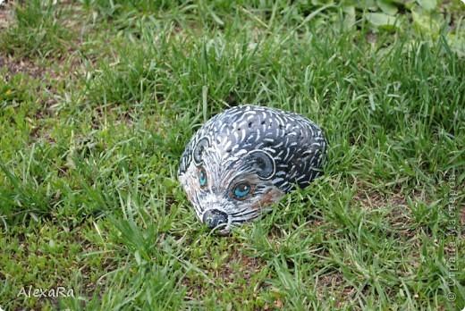 Вот такие новые камушки-зверушки украшают теперь наш сад... фото 1