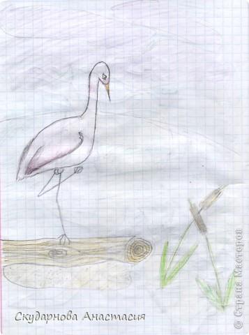 Все это я рисовала когда мне было 10 лет, так что не ругайте строго:) По большей части аниме)) фото 20