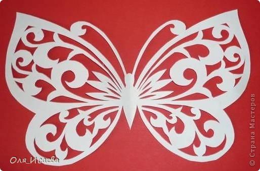 Мои первые бабочки фото 3