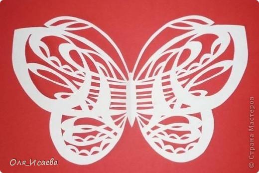 Мои первые бабочки фото 5