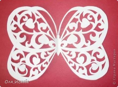Мои первые бабочки фото 4