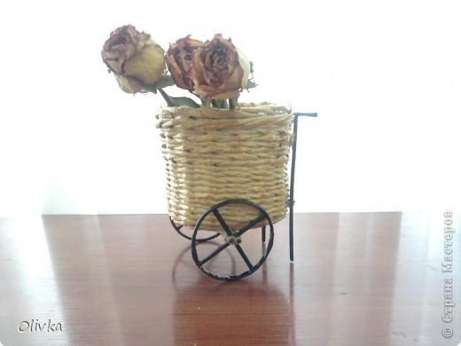 Плетенка на колесах фото 2