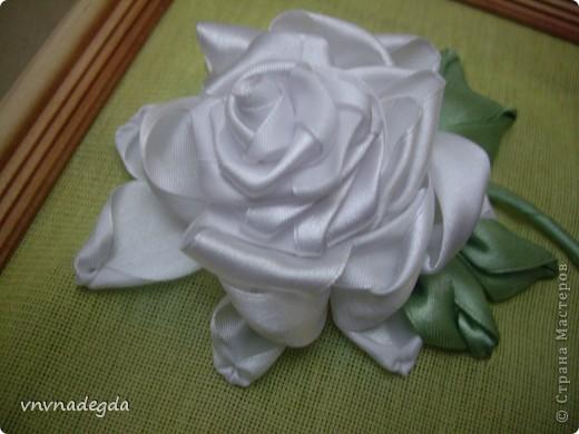 Вот такая роза получилась для замечательной женщины по имени Роза. На вышивку времени было совсем мало (вечер), но я старалась! фото 2