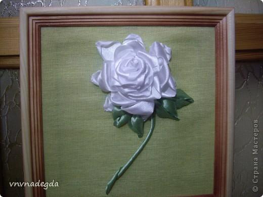 Вот такая роза получилась для замечательной женщины по имени Роза. На вышивку времени было совсем мало (вечер), но я старалась! фото 1