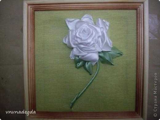 Вот такая роза получилась для замечательной женщины по имени Роза. На вышивку времени было совсем мало (вечер), но я старалась! фото 3