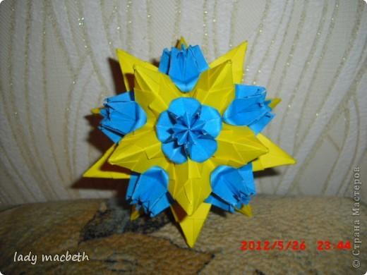 Модификация Пуансетии на Торнилло фото 2